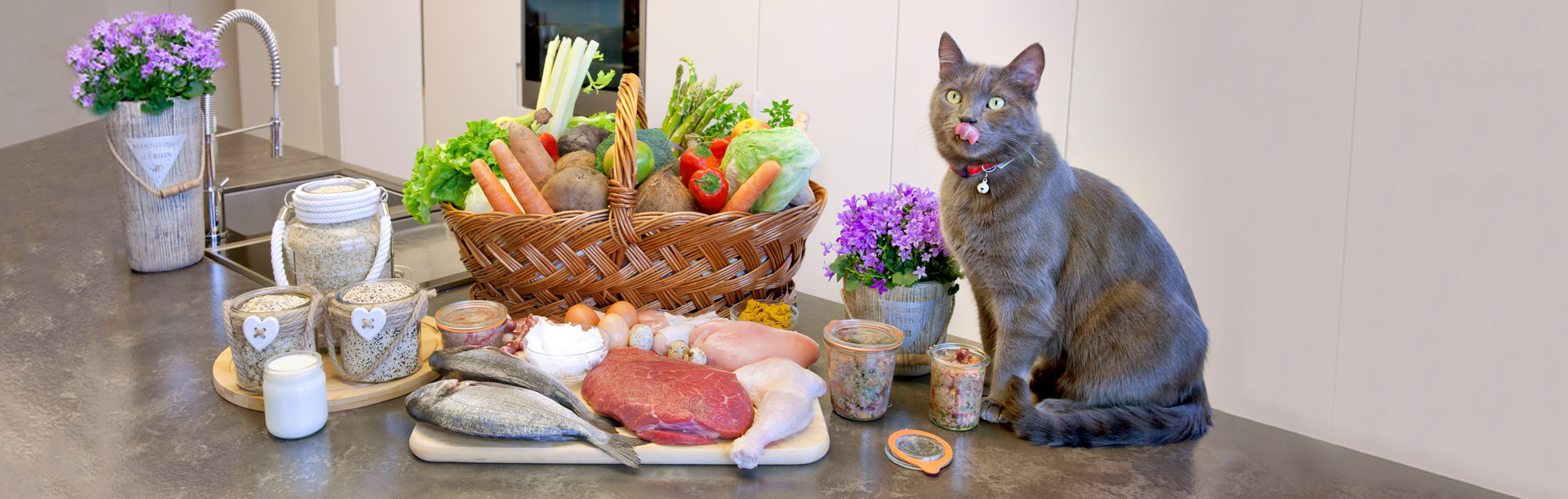 Biologically Appropriate Raw Food (BARF) for Pets